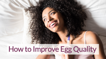 How to Improve Egg Quality
